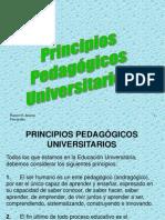 4. PrinPedaUniv ++++