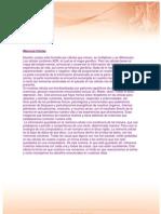memoria_celular.pdf