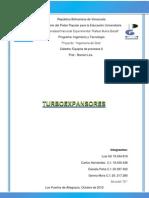 Turboexpansores.docx