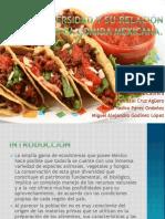 La biodiversidad y su relación con la comida mexicana..pptx