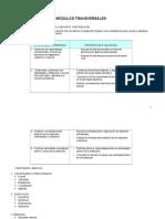 MÓDULOS TRANSVERSALE, Programacion , Educ. Física 2008