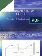 The Fundamental Unit of Life