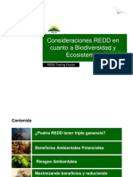 S. Panfil - Consideraciones REDD en Cuanto a Bio Divers Id Ad y Ecosistemas
