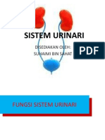 SITEM URINARI