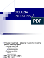 OCLUZIA INTESTINALA