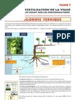 La Chlorose Ferrique