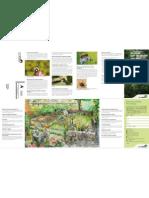 [PDF] Un Jardin Pour Les Abeilles Sauvages Ratgeber_wildbienen_f
