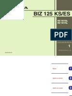 biz125 ks-es.pdf