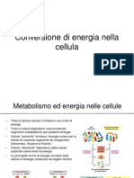Bc5 - Conversione Energia Cellula