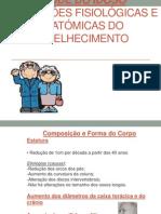 Alteracoes-fisiologicas-e-anatomicas-do-idoso MB aula Parte A 3ºP