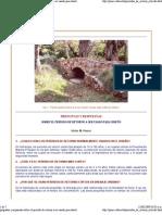 preguntas y respuestas sobr...pdf