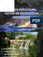 Agua en Avicultura