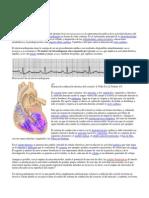 Electrocardiograma Fases de Repolarizacion Miocardica