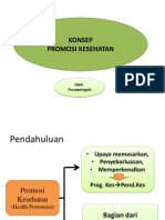 promosi kesehatan2