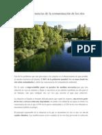 Causas y consecuencias de la contaminación de los ríos