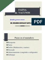 2- Proceso de Faena de Bovinos