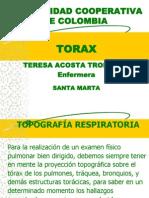 Torax Final