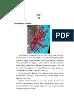 Paper Delta Dan Pantai