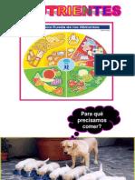 Apresentacao Alimentos e Sistemas Digestorios 8o