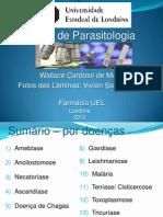 Atlas de Parasitologia.pdf