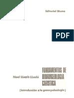 Noel LLopis Llado-Calizas