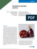 Antioxidantes en Carnicos