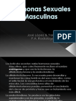 Hormonas_Sexuales_Masculinas 2.ppt