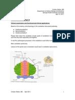 Neuro - Cerebellum Physio and Clinical