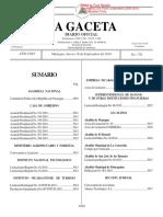 Gaceta No.176 Constitucion Politica de Nicaragua