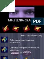 Mia Stenia Gravis