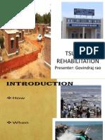 Tsunami Rehabilitation