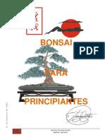 Bonsai Para Principiantes