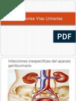 113250909 Infecciones Vias Urinarias