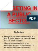 17656748 Budgeting in a Public Sector Power Point