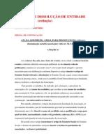 MODELO DE DISSOLUÇÃO DE ENTIDADE