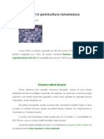 Locul Prunului in Pomicultura Romaneasca