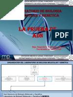 Presentacion ADN.pptx