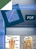 Aspectos Básicos para Implantes Dentales