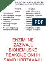 8.Nedelja ENZIMI Bioenergetika Fotosinteza