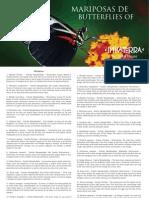 RA - Mariposas.pdf