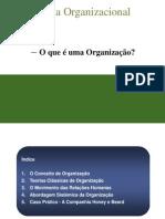 1193699602_teorias_organizacao