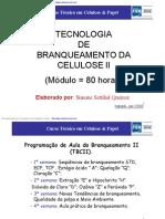 Branqueamento.pdf