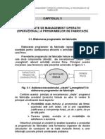 Management Operational Si Metoda Punctului Critic