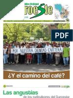 Periódico+El+Suroeste+febrero+de+2013