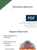 Glaucoma Erick