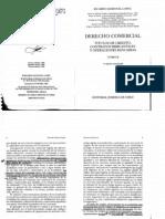 Sandoval López, Ricardo - Derecho Comercial Tomo II.pdf