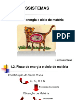 2- fluxo energia_ciclo matéria