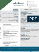 CV Alejandro González Rangel (Mar 2013)