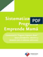 12 Programa Emprende Mama