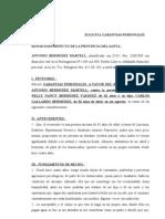 Solicita Garantias Personales.-bermudez Martell.
